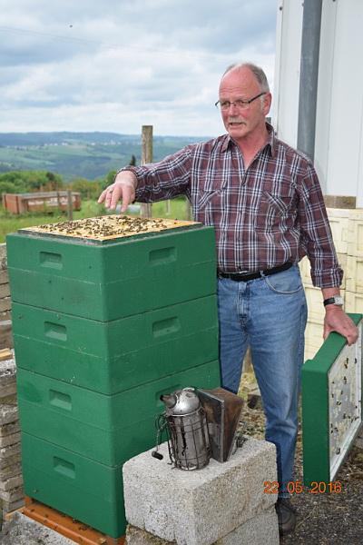 Alfred Flesch an einem Bienenvolk